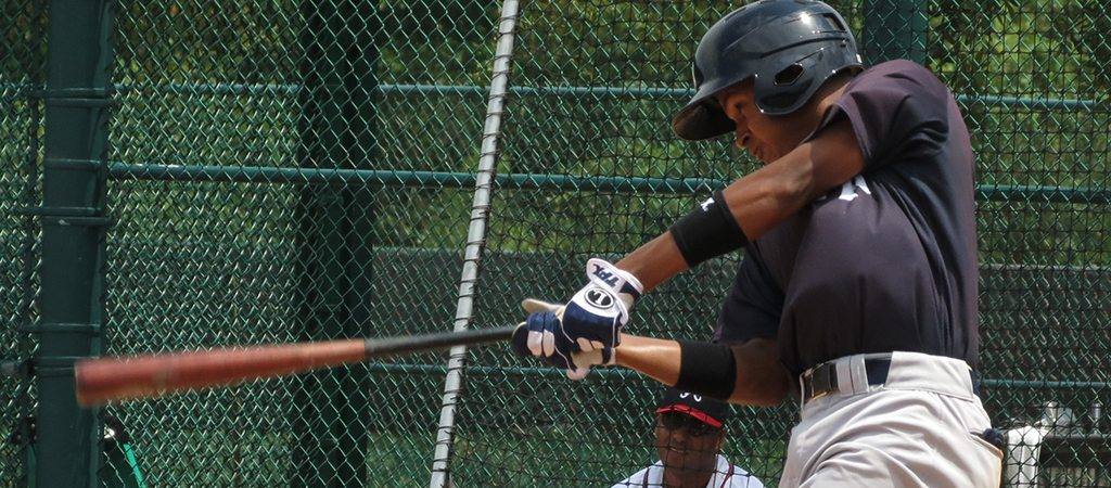 Leonardo Molina had two of the Yankees four hits (Bryan Green)