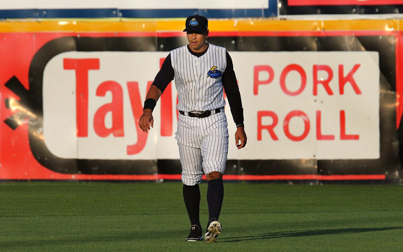 New York Yankees slugger Alex Rodriguez warms up in the outfield in front of a sign promoting one of Trenton's most well known delicacies at ARM & HAMMER Park in Trenton on Wednesday, May 25, 2016 before a game against the New Hampshire Fisher Cats. Rodriguez joined the Double A Yankee farm team for a second day as part of a rehab assignment. Photo by Martin Griff