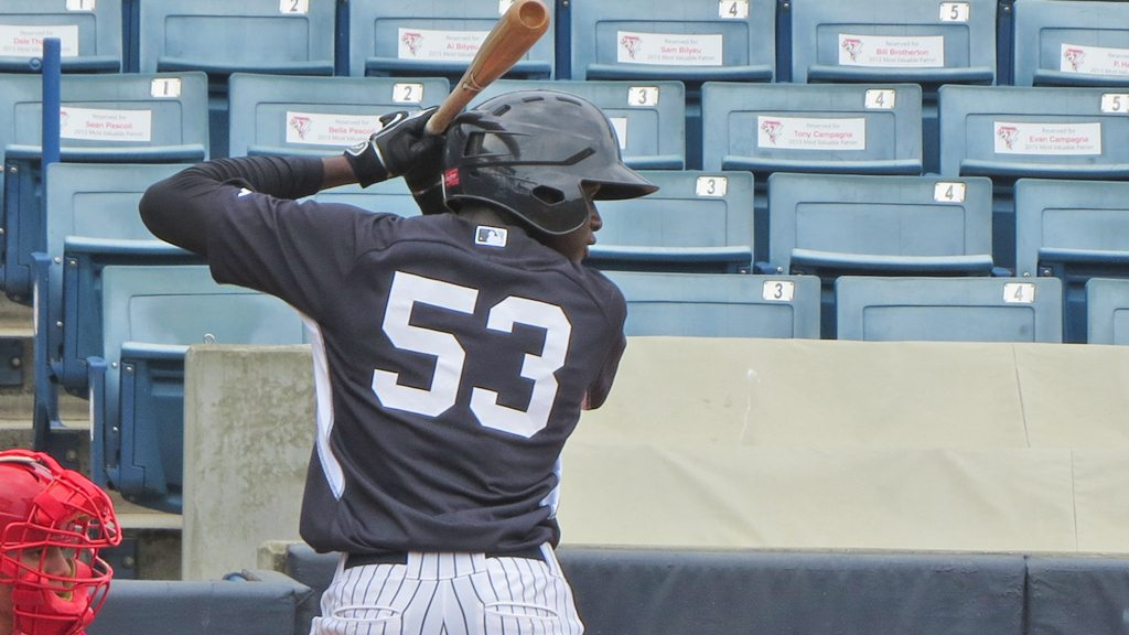 Yankees prospect Estevan Florial in the instructional league in 2015 (Bryan Green)