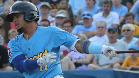 Gleyber Torres was the centerpiece of the trade with the Cubs, but who is the newest Yankees prospect? (Larry Kave/Myrtle Beach Pelicans)